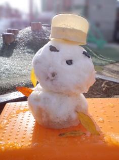 ぷち雪だるまさん、とけないで!
