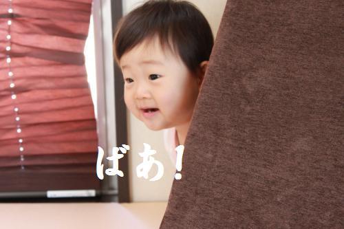 IMG_1845_convert_20090919113953.jpg