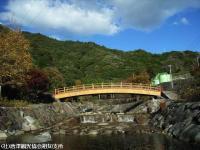 2008.11.18ほたる橋②