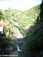 2008.11.18見帰りの滝