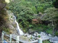 2008.11.18見帰りの滝②