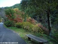 2008.11.18滝より100mほど下流③