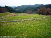 tanada2009021911(石盛棚田)