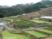 2009022618南川原棚田(下)