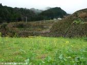 2009022619日本一石積み周辺02
