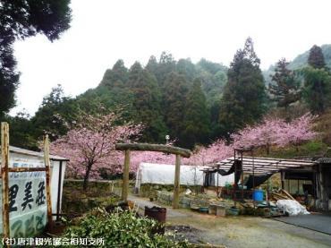 08里見荘(2009年2月27日)1