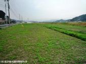山崎県道40号線沿い(2009年2月27日)03