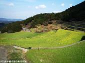 09大平棚田(2009年3月2日)12