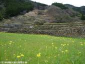 08大平棚田(2009年3月9日)05