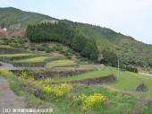 日本一の石積み周辺(2009年3月18日)03