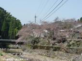 里美荘(2009年3月17日)02