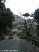 見帰りの滝道中(2009年3月21日)08