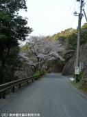 見帰りの滝道中(2009年3月21日)09