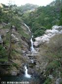 見帰りの滝(2009年3月21日)01