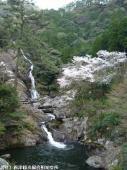 見帰りの滝(2009年3月21日)03