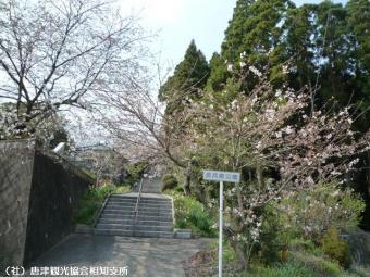 幡随院長兵衛公園(2009年3月23日)01