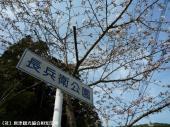 幡随院長兵衛公園(2009年3月23日)02