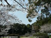 幡随院長兵衛公園(2009年3月23日)03
