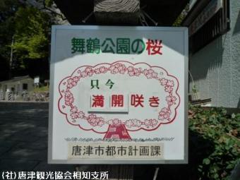 唐津城(2009年3月30日)01