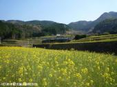 日本一の石積み周辺(2009年4月7日)06