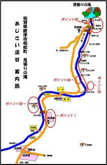 01.あじさい状況(2009年4月17日)