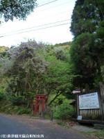遊歩道入り口(2009年4月17日)01