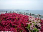 鏡山(2009年4月22日)13