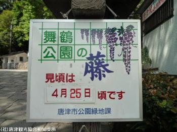 唐津城(2009年4月22日)01