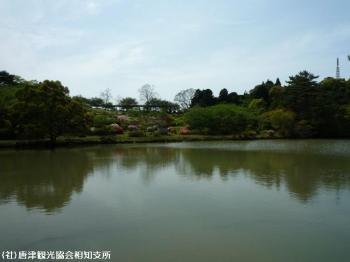 鏡山の池(2009年4月22日)01