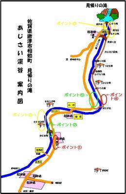 00.開花状況マップ(2009年5月11日)