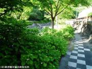 04.ほたる橋駐車場側(2009年5月18日)02
