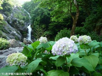 01.川開き(2009年6月1日)01