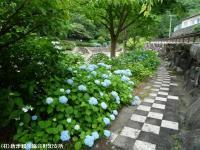 04.ほたる橋市道側(2009年6月7日)02