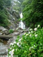 18.滝周辺(2009年6月10日)01