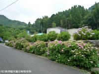01.ほたる橋駐車場(2009年6月12日)01
