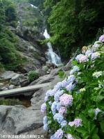 18.滝つぼ周辺(2009年6月18日)01