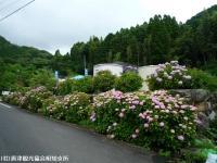 01.ほたる橋駐車場(2009年6月22日)01