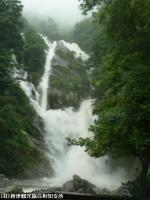 18.滝つぼ周辺(2009年6月30日)01