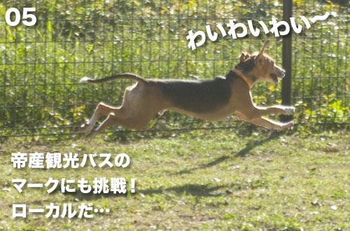 05_091007.jpg