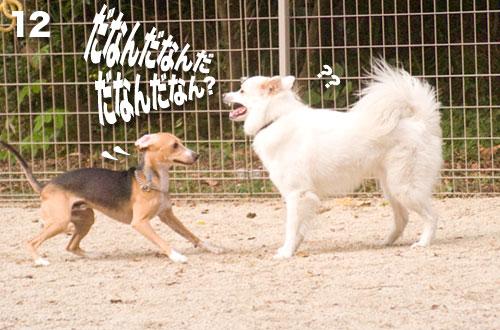 12_091002.jpg