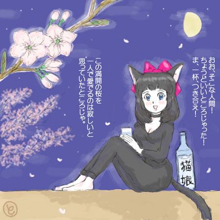 夜桜ねこみみ