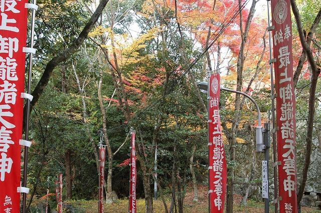 龍泉寺の紅葉12