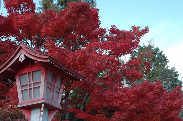龍泉寺の紅葉16