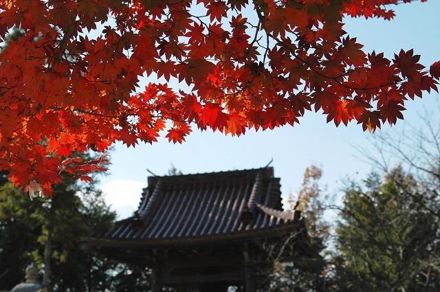 龍泉寺の紅葉17