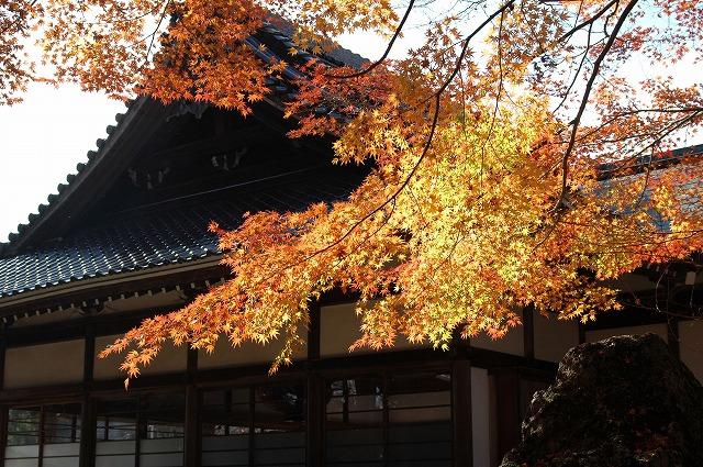 龍泉寺の紅葉23