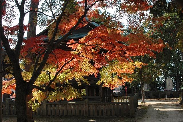 龍泉寺の紅葉38