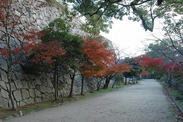 岡山城12