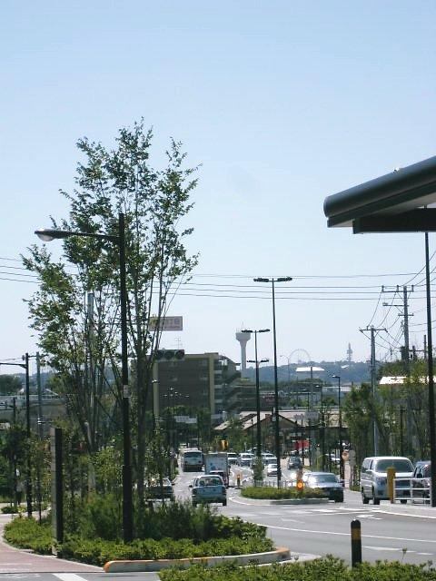 武蔵境通り 下りの景色