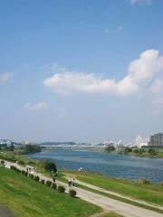 晴天で気持ちよい川沿い。。。