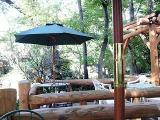 木漏れ日がこれまたいい感じのテラス席。